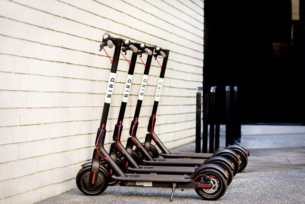 Bird Electric Scooters for sales