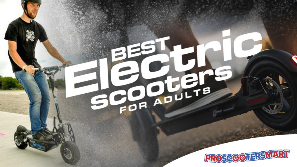 best electric scooters for adults