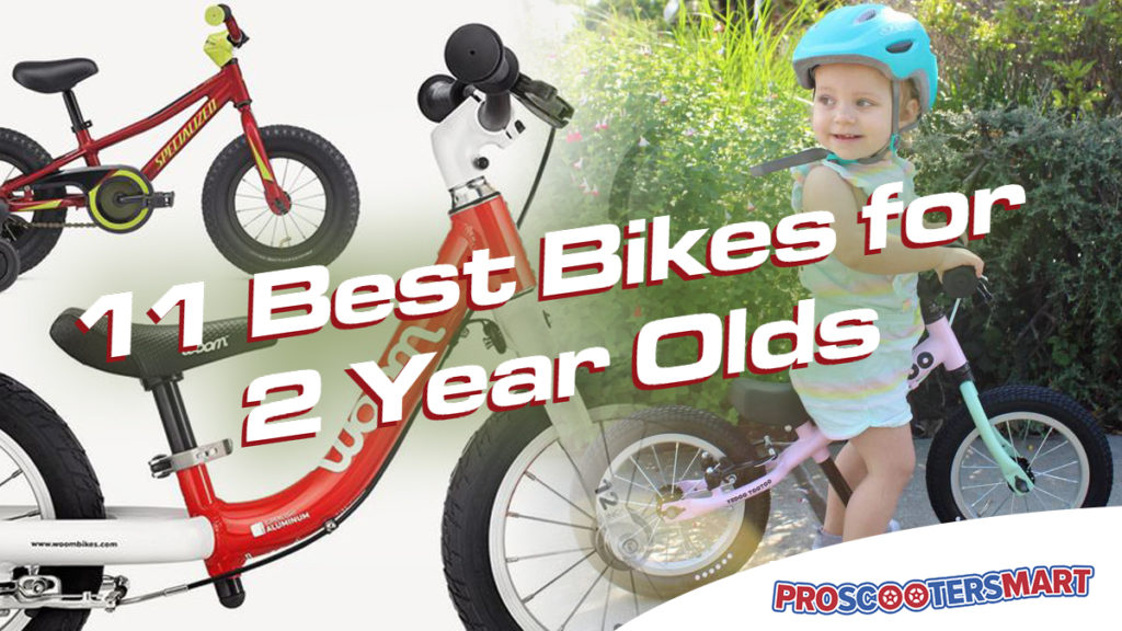 11 Best Bikes for 2 Year Olds